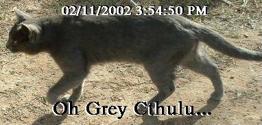 OH Grey Cthulu